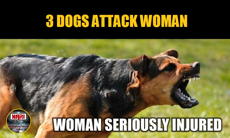 ATTACKED BY 3 DOGS: Woman in Serious Condition after being attacked by 3 dogs