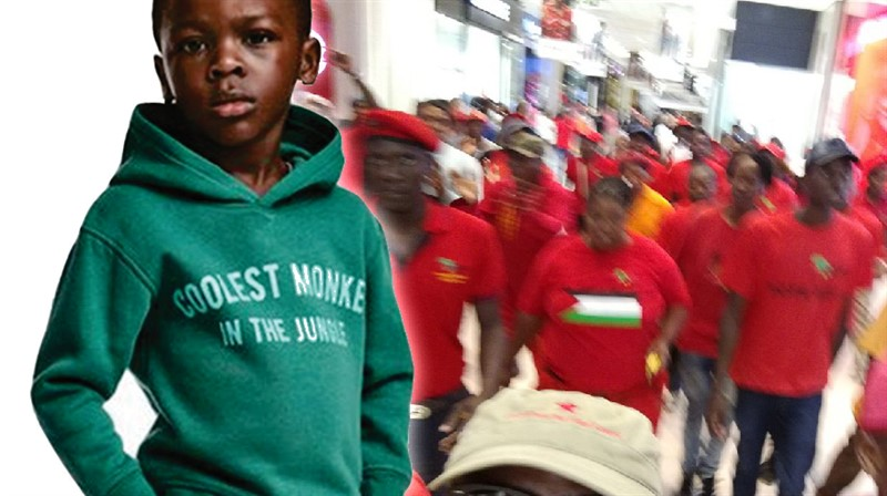 WATCH: Coolest Monkey in the Jungle sweater Sparks Violent EFF Protest, H&M clothing in Sandton City trashed