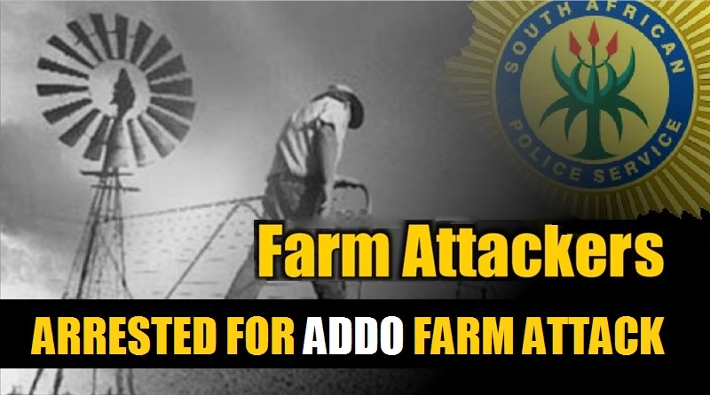 Eastern Cape: Four Suspects Arrested and Firearms seized, Addo Farm
